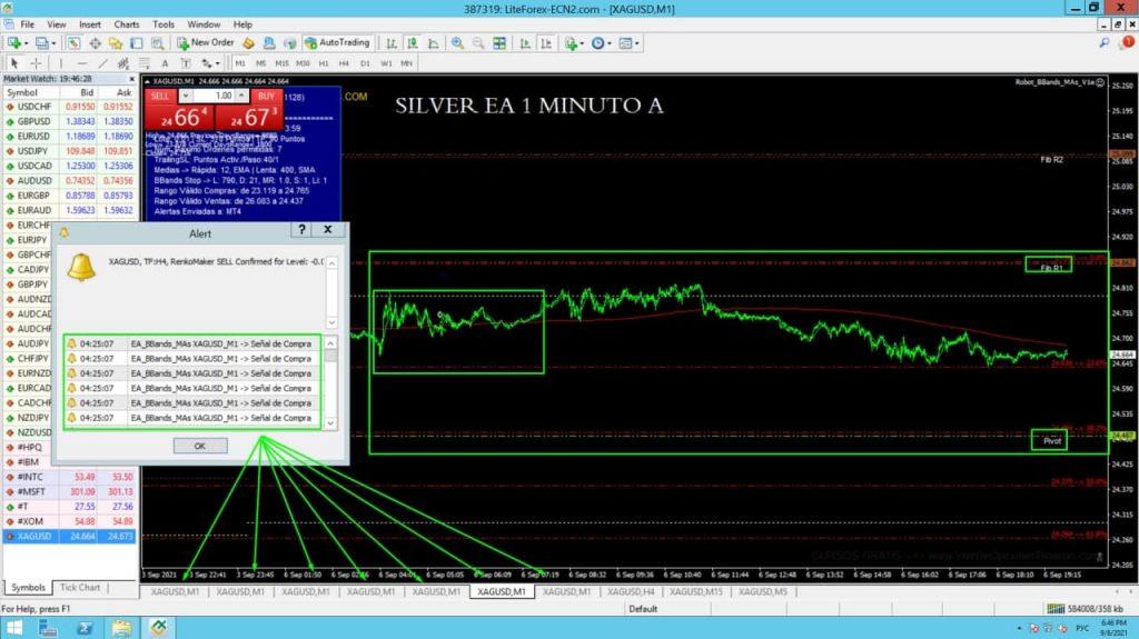 Captura de pantalla de interfaz Silver EA